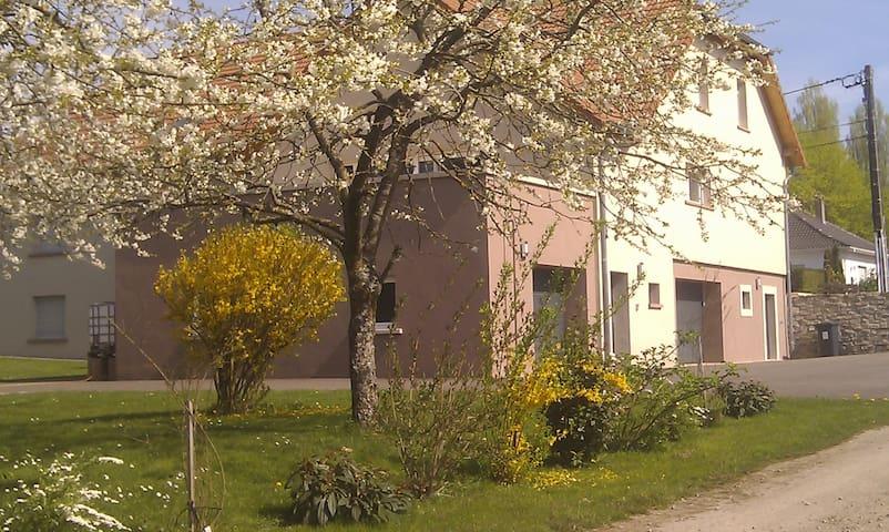 Rohrbach-lès-Bitche的民宿