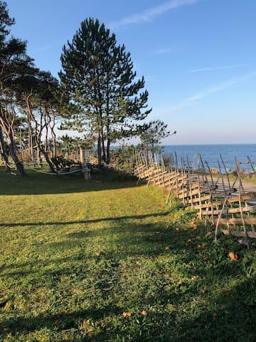 维斯比 (Visby)的民宿