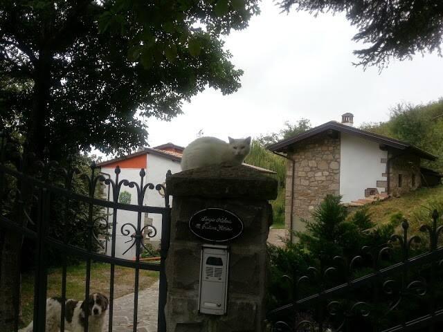 lama mocogno的民宿