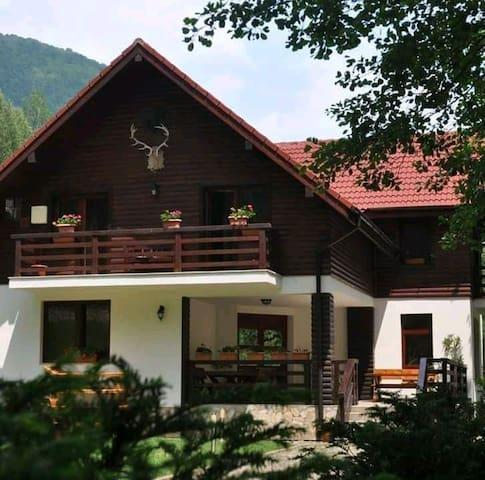 Clopotiva的民宿
