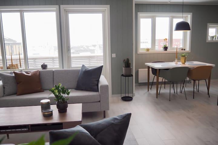 Exclusive top floor apartment - City Center