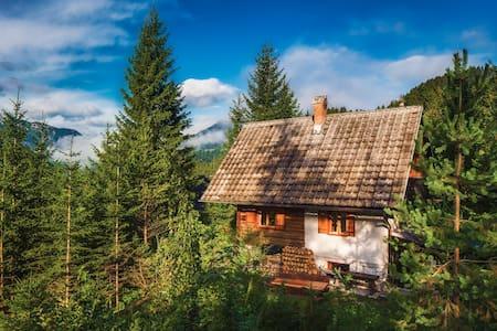 Romantic Cabin in beautiful Alps