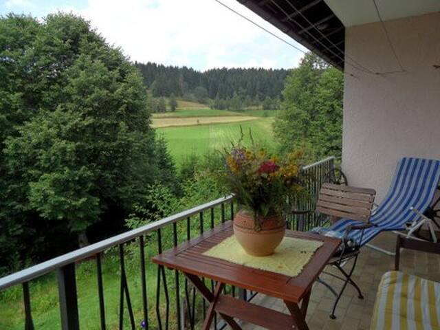 Eisenbach (Hochschwarzwald)的民宿