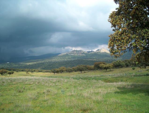 Cabañas del Castillo的民宿