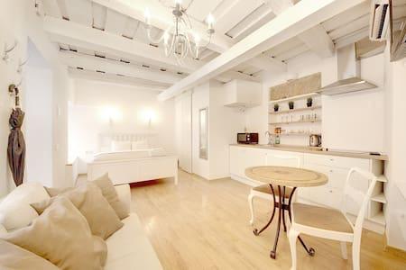 Cozy Old Town Studio Apartment
