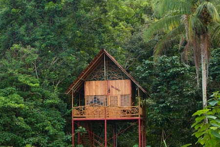 Rainforest Tree House with Hot Springs