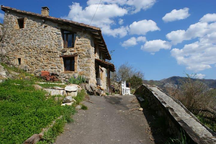 阿斯图里亚斯(Asturias)的民宿