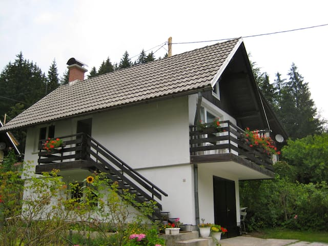 Jezersko的民宿