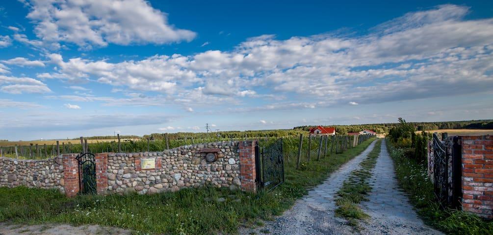 Mozów的民宿