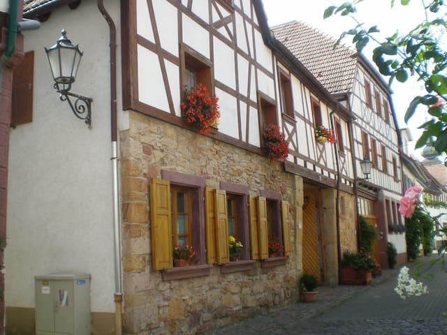 Bad Bergzabern的民宿