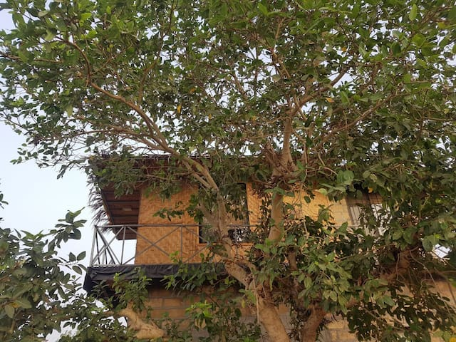 Sasan Gir的民宿