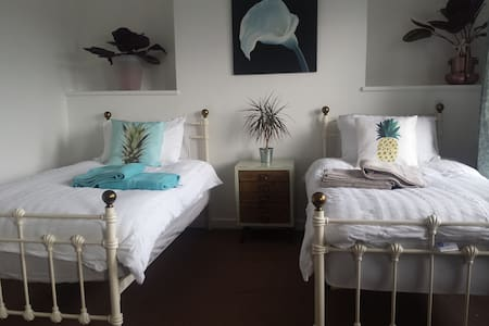 City centre 6 dbl  bedroom, Edwardian Town House.