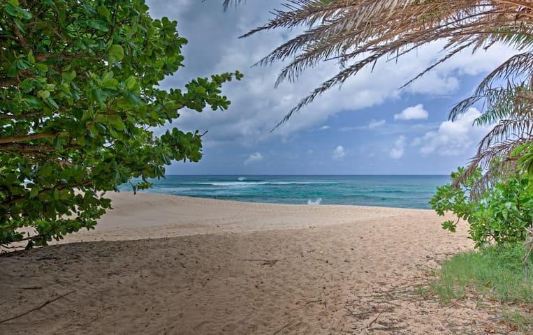 Grand Ocean View! Best Location! North Shore
