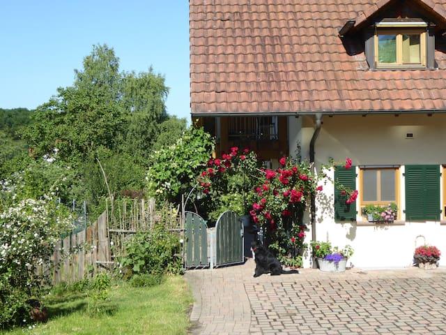 Kleinsteinhausen的民宿