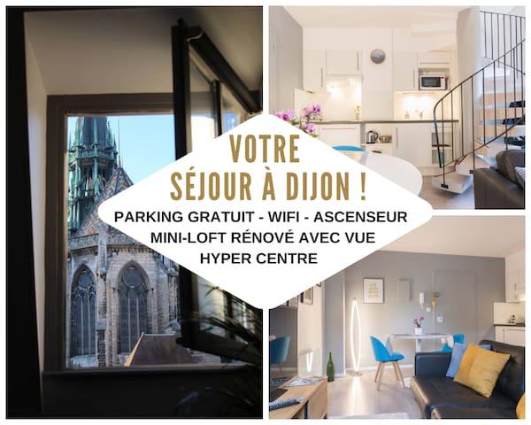 Mini-Loft in the City-Center Dijon with view !