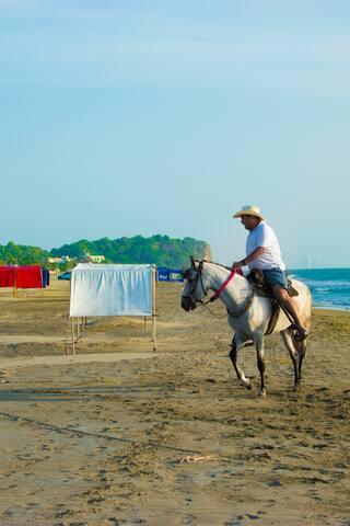哥伦比亚的体验