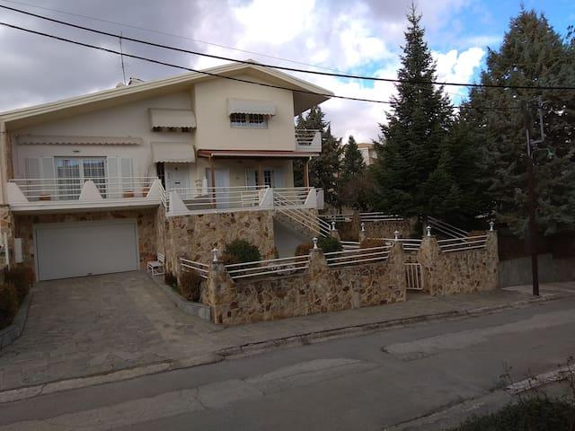 Kozani的民宿