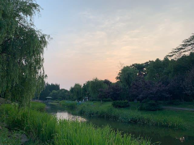 徐汇区的民宿