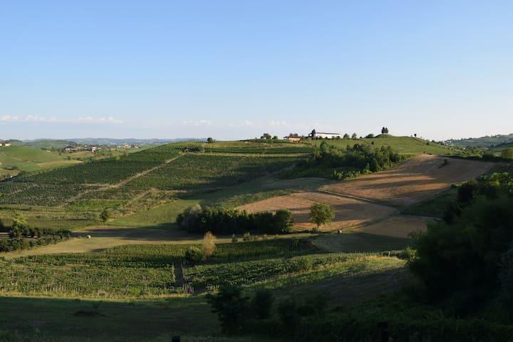 Montegrosso D'asti的民宿