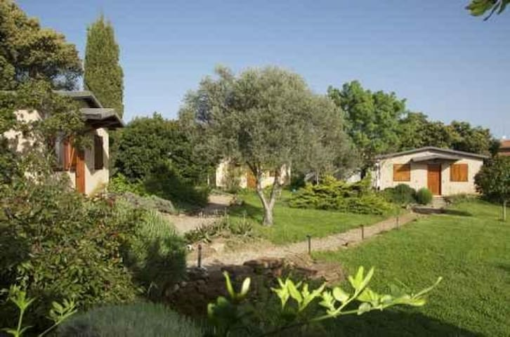Casas de Belvís (Belvís de Monroy)的民宿