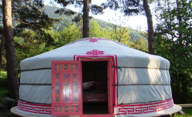 Véritable yourte mongole en Savoie