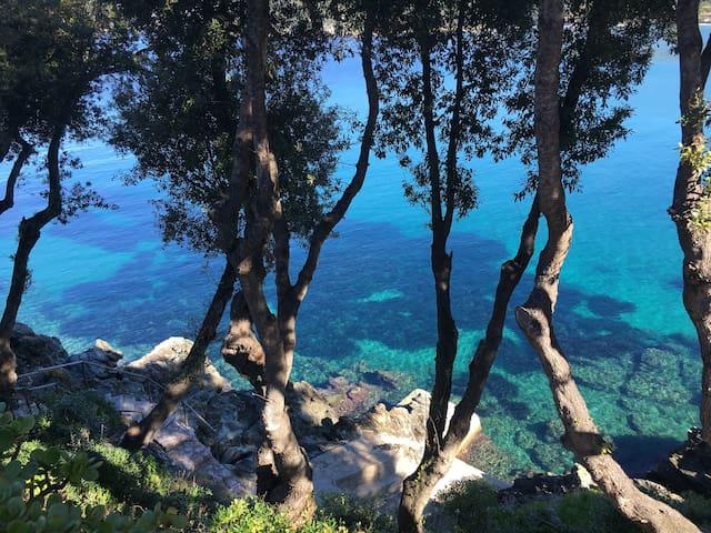 Isola d'Elba的民宿