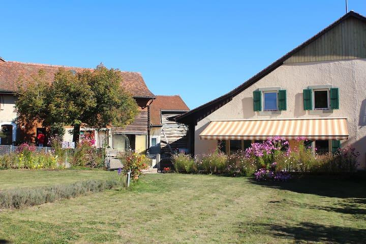Le Mont-sur-Lausanne的民宿