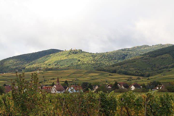 Wintzenheim的民宿