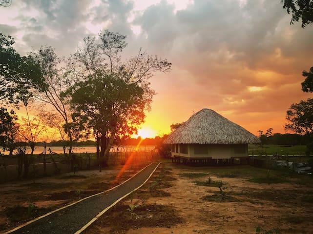 Yodha Kandiya Lower Canal的民宿
