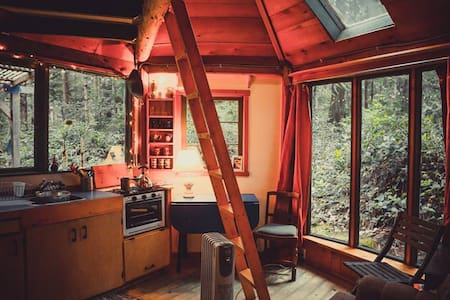 Rustic cabin in the woods