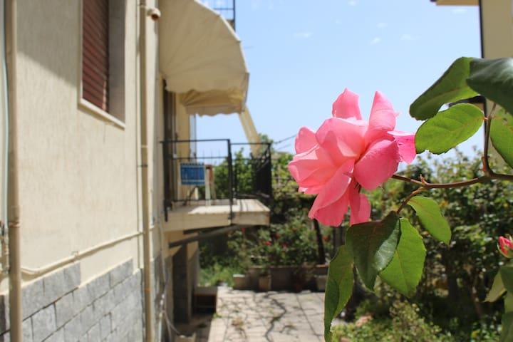 Guardavalle Marina的民宿