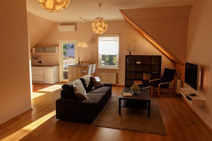 Vecbulduri Apartment Jurmala