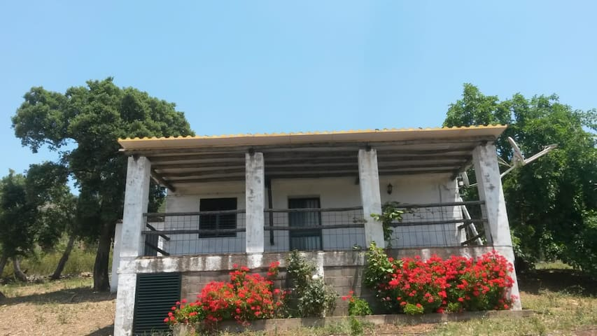 Cañamero的民宿
