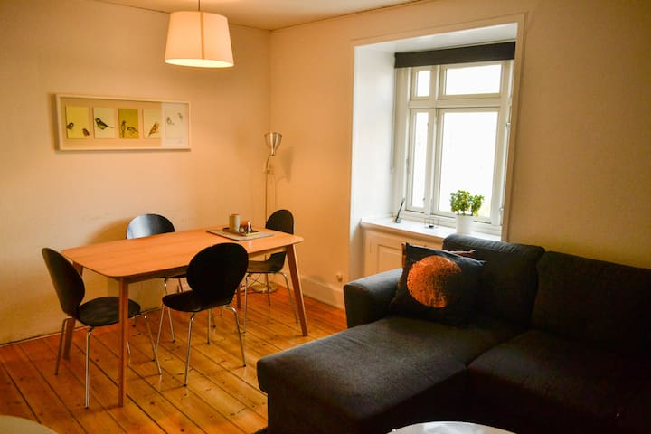 Cozy apartment! Near train station and supermarket