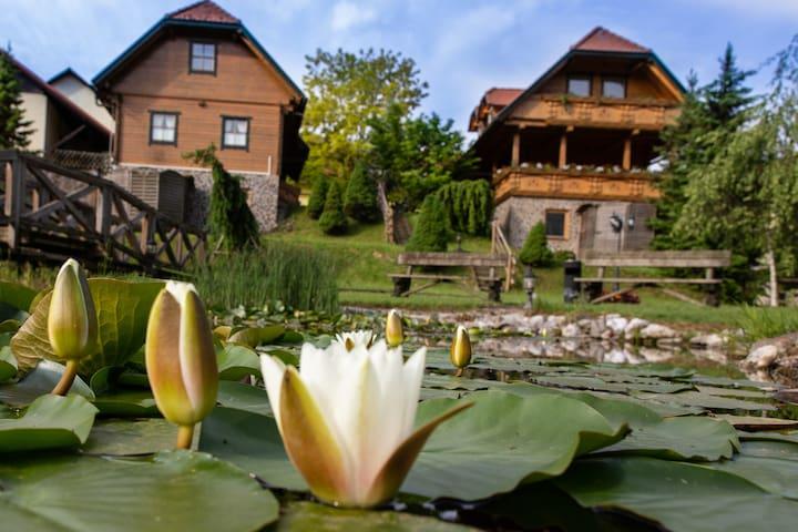 Ljubija的民宿