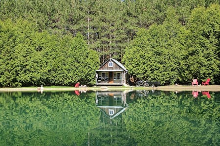 A spectacular cabin setting in the woods