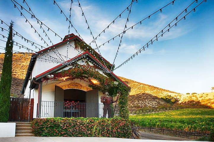 Vineyard House overlooking Valley & Vineyard