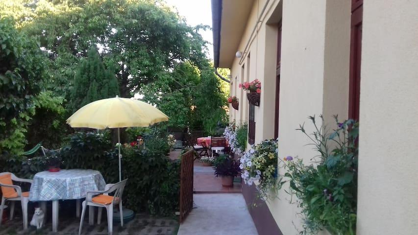 布达佩斯的民宿