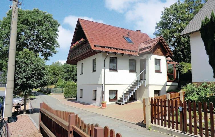 Auerbach/Ot Rempesgrün的民宿