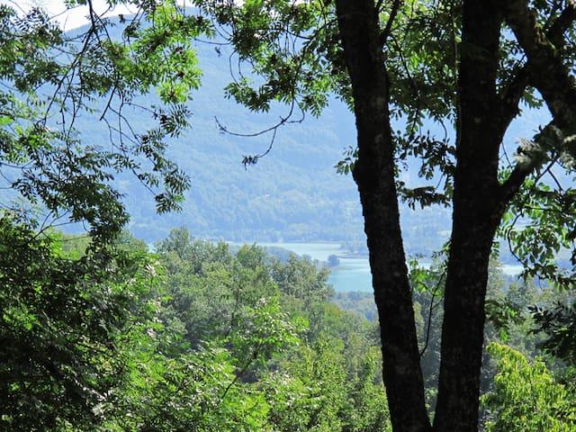 Maison dans les arbres avec vue sur le lac