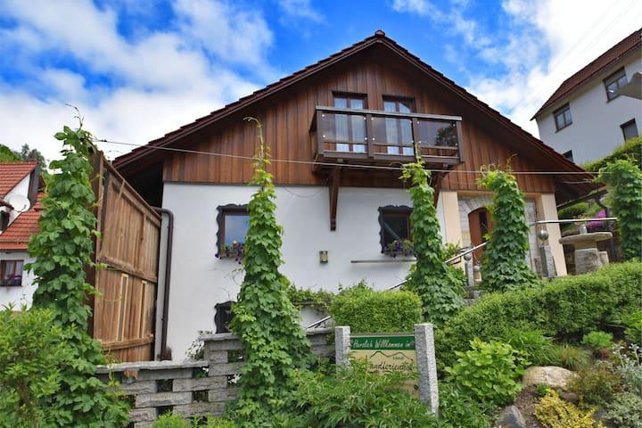 Schleusegrund ot Langenbach的民宿