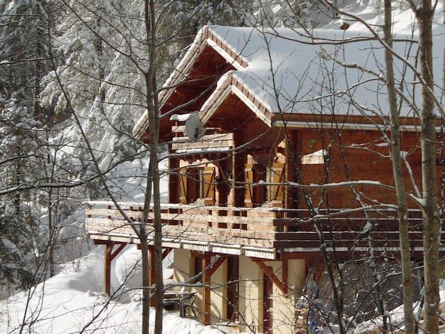 Appartement dans Chalet Col de la Faucille