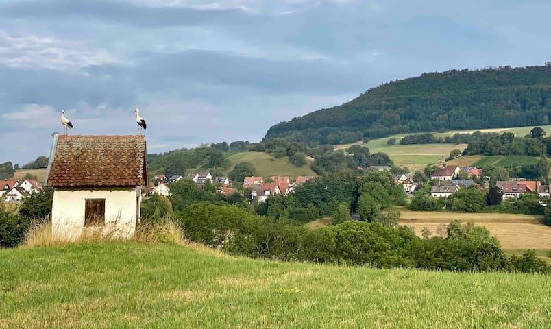 Wittnau的民宿
