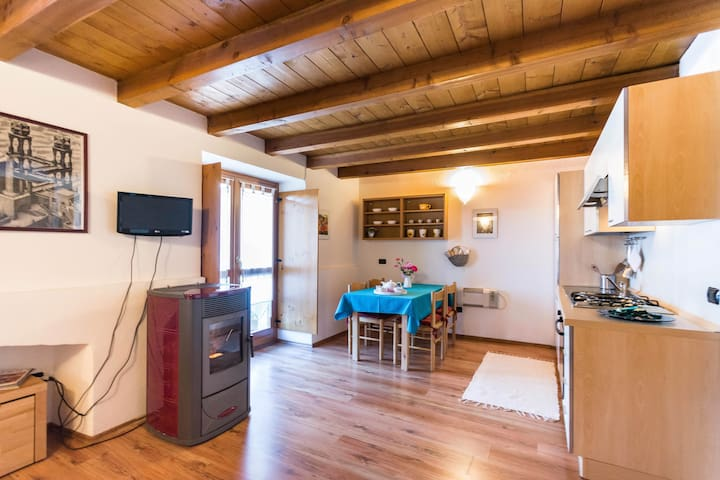Cozy studio apartment in the Alps
