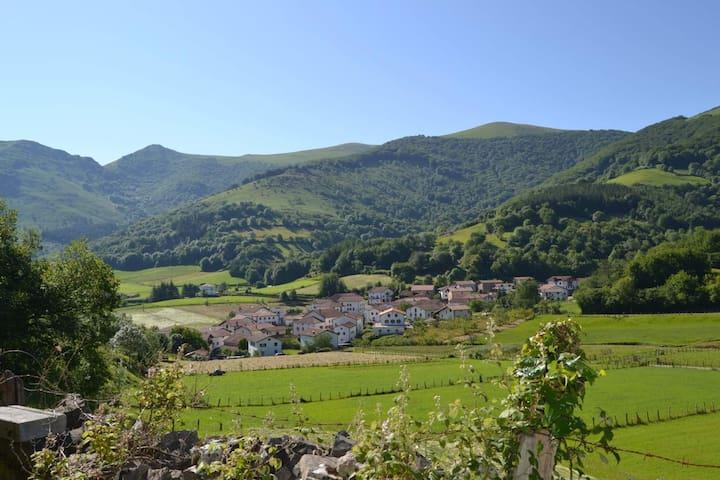 Beintza-Labaien的民宿