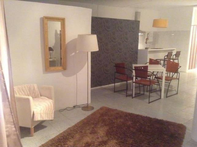 Charmant appartement loft centre de