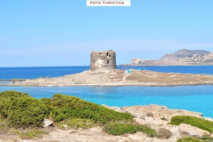 Stintino - Trilocale vista mare