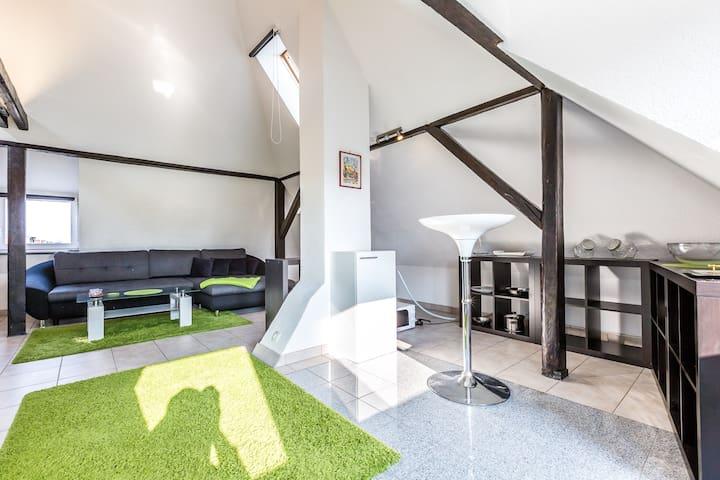 Oase Bonn / Nice Apartment