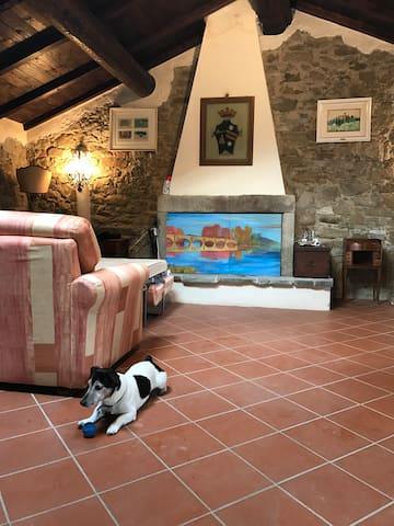 Pratovecchio的民宿