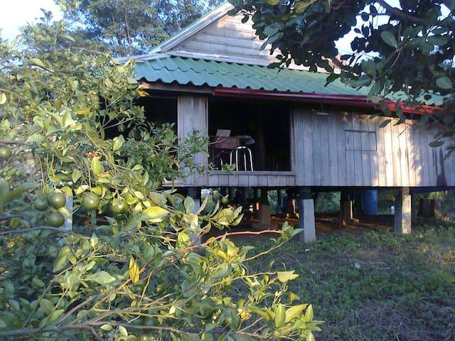 Banlung的民宿